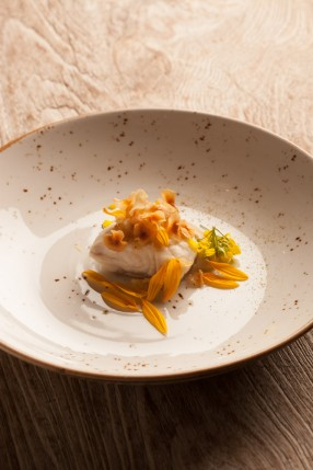 EVEN_BENOIT_turbot tonka bean-1_1500PX